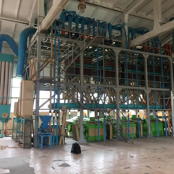 Flour Milling Line 65-70 Tones/Day 6 Roll Mills